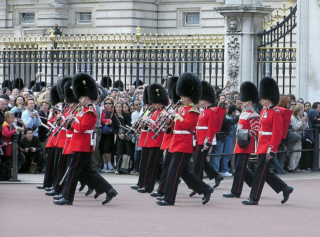 Guards mounting at Buckingham Palace (or in need of hot water).