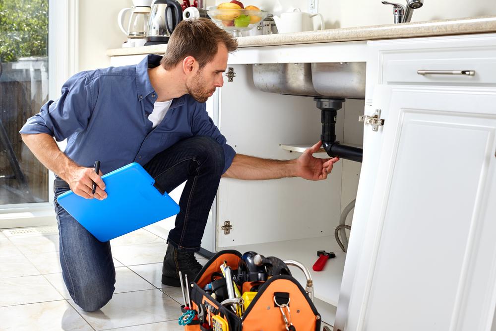 Plumber Inspecting Sink