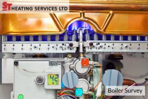 commercial boiler survey
